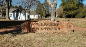 chippokes plantation philip ludwell lucy ludwell john paradise