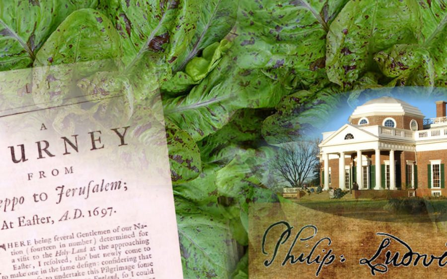 philip ludwell thomas jefferson and aleppo lettuce
